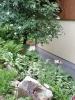 Garten 2012